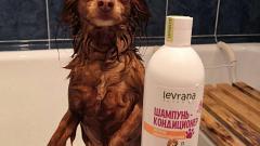Отзыв: Про шампунь-кондиционер для собак длинношерстных пород от Levrana