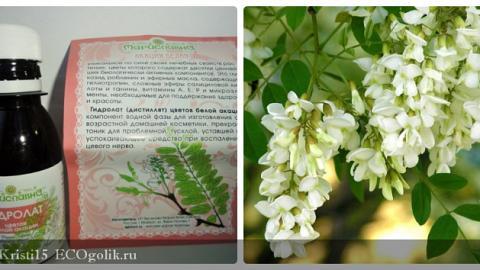 Отзыв: Гидролат цветов белой акации Мариславна