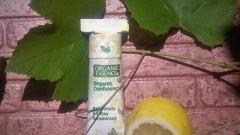 Отзыв: Красота  и  защита по-американски:  дезодорант Organic essence