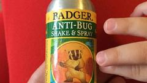Отзыв: Спрей от насекомых Badger anti-bug spray