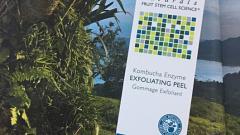 Отзыв: Exfoliating Peel Kombucha Enzyme пилинг с энзимами комбучи Andalou Naturals