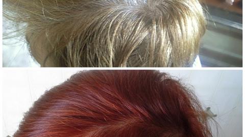 Отзыв: Окрашиваем седину! Эффект на тонких славянских очень мягких волосах.