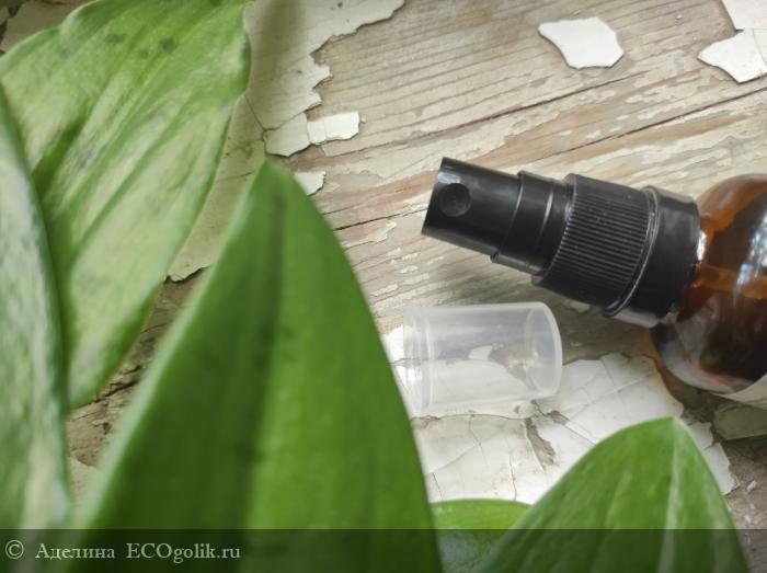 Антисептик-спрей для рук антибактериальный Лаванда и чайное дерево SIBERINA - отзыв Экоблогера Аделина