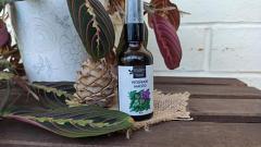 Отзыв: Репейное масло заставит волосы остаться