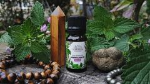 Отзыв: Эфирное масло Пачули (Patchouli essential oil) от компании SIBERINA