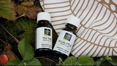 Отзыв: Эфирные масла для осенней аптечки: Чайное дерево и Эвкалипт от Natura Botanica