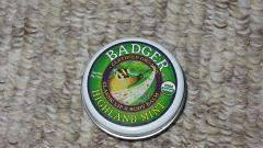 """Отзыв: Бальзам для губ и тела """"Highland Mint"""" Badger"""